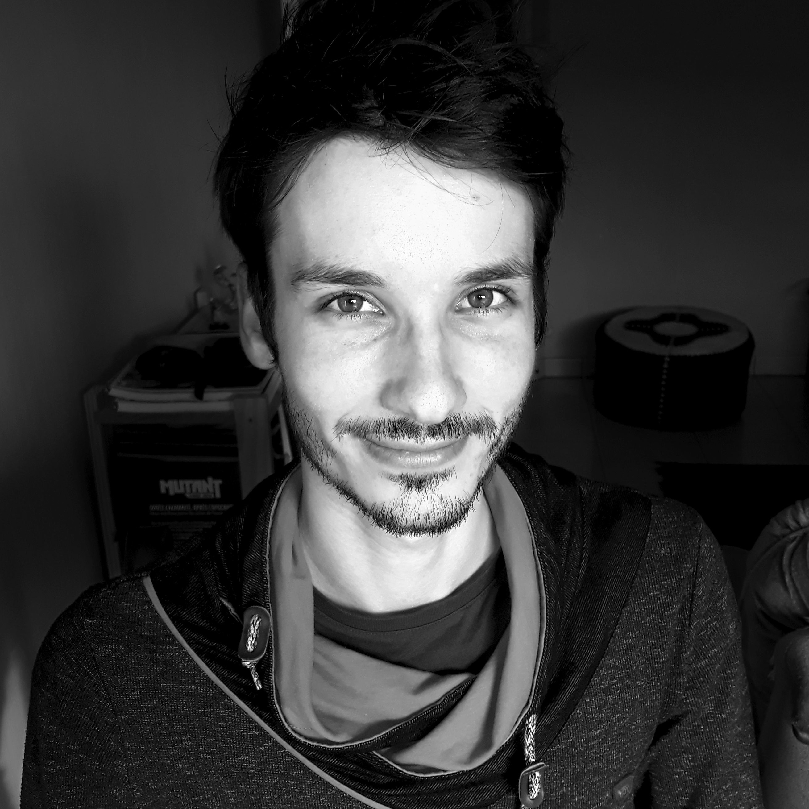 Game artist 2D, Illustrateur